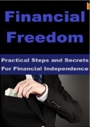 Practical Steps to Financial Freedom and Independence by Robert Sullivan