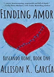 Finding Amor by Allison K. Garcia